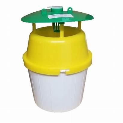 Bucket Trap Yellow Cs Ips Pheromone Parent