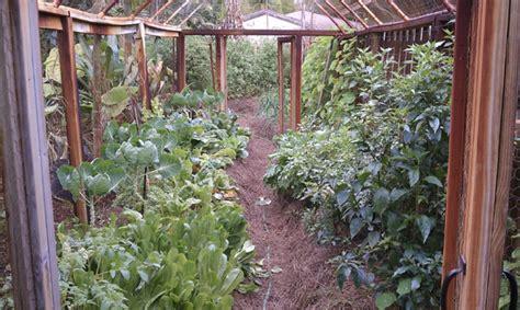 The Florida Vegetable Garden-a Gardener's Art