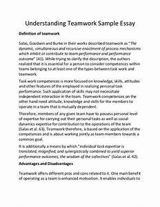 essay 123 custom argumentative essay