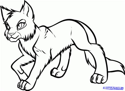 Warrior Cat Coloring