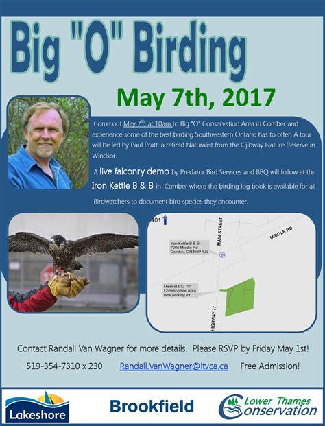 big o birding event 171 lower thames valley conservation