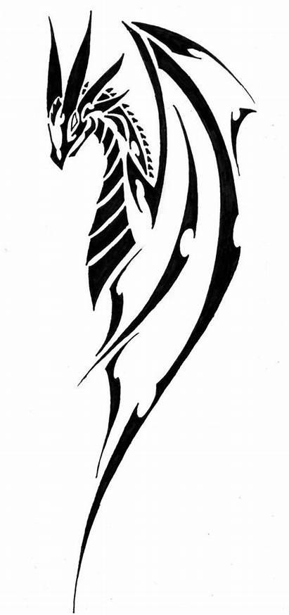 Tribal Dragon Tattoo Drawings Designs Tattoos Fantasy