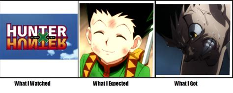Hunter X Hunter Memes - hunter x hunter weg what i watched what i expected what i got know your meme