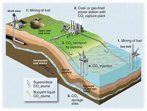 Carbon Capture And Storage  How Green Can Black Be