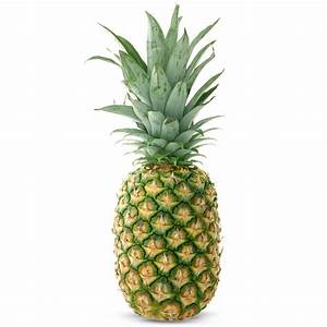 Pineapple Plant charity gift / Concern Gifts
