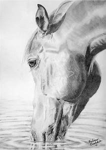 Items similar to Equine pencil drawing print of horse ...