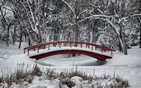 winter wonderland  large images
