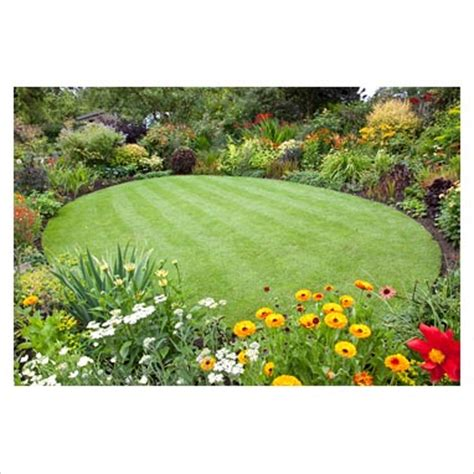 oblong garden designs gap photos garden plant picture library circular lawn surrounded by flowerbeds gap