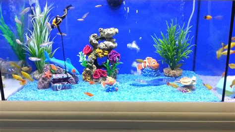 Ideas For Fish Tank by Brilliant Fish Tank For