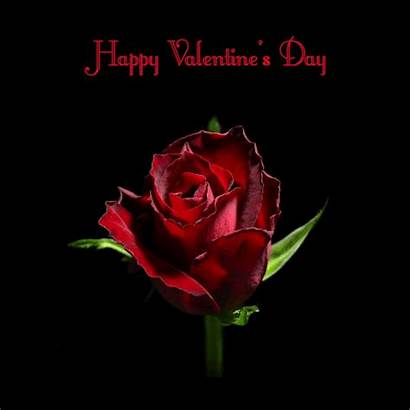 Valentines Animated Happy Gifs Rose Roses Animations