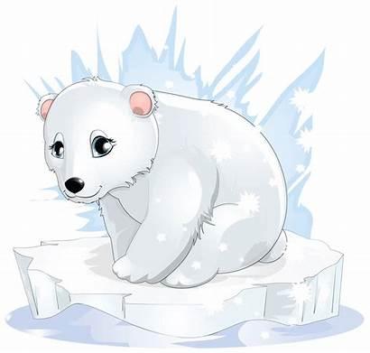 Bear Transparent Polar Clipart Winter Yopriceville