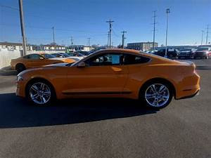 New 2019 Ford Mustang EcoBoost Premium 2D Coupe in Bloomington #NF2097 | Sam Leman Ford