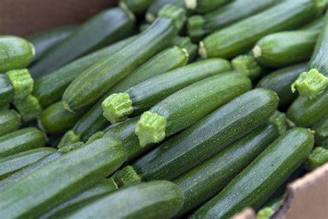 cuisiner des courgettes cuisine estivale 4 astuces pour bien cuisiner la
