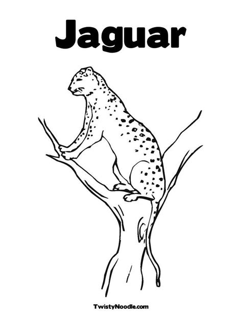 jaguar coloring pages coloring home