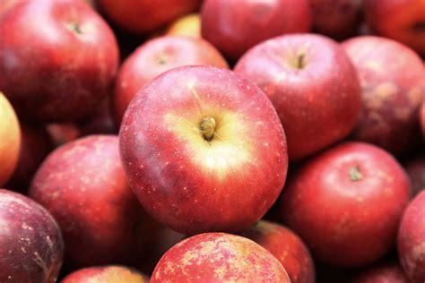 Guide to 18 Apples Varieties