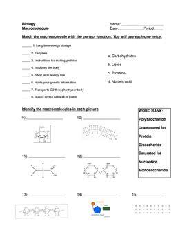 Macromolecule Worksheet By For The Love Of Biology Tpt