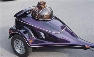 Attache Remorque Norauto : motard e s et chiens motards sur wamiz forum voyager et jouer avec son chien page 2 wamiz ~ Medecine-chirurgie-esthetiques.com Avis de Voitures