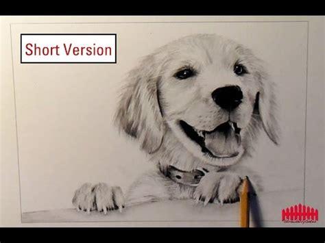 pencil drawing dog    draw fur short version youtube