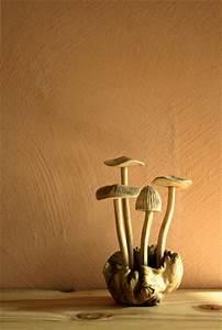 chaux brossee esprit cabane idees creatives et ecologiques With recette peinture a la chaux