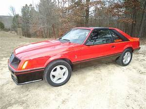 rare 1981 Mustang Cobra matching numbers, in good condition - Classic Ford Mustang 1981 for sale