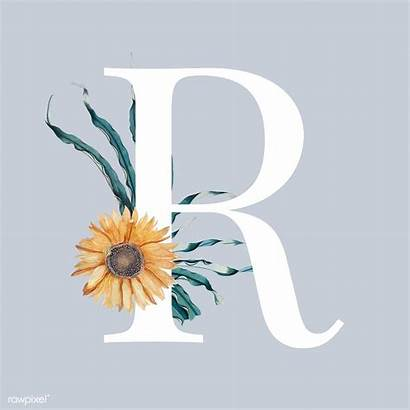 Sunflower Backgrounds Decorated Alphabet Drawn Hand Letters