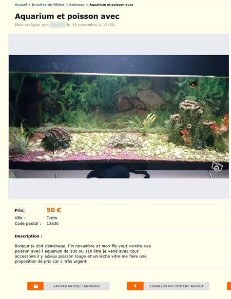 aquarium cote d azur aquarium et poisson avec animaux provence alpes c 244 te d azur best of le bon coin