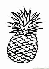 Coloring Pineapple Popular sketch template