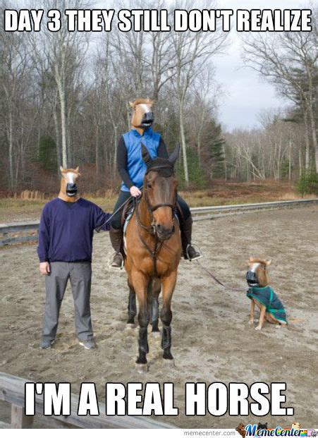 Horse Riding Meme - horse memes best collection of funny horse pictures