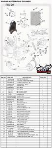Trailmaster 150 Go Kart Parts