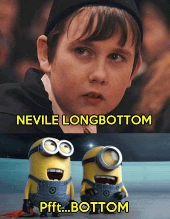 Harry Potter  Despicable Me Crossover  Harry Potter