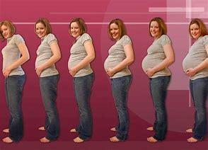 календарь беременности по неделям рассчитать срок когда в декрет