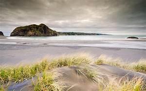 Nature, Landscapes, Beaches, Sand, Grass, Shore, Coast