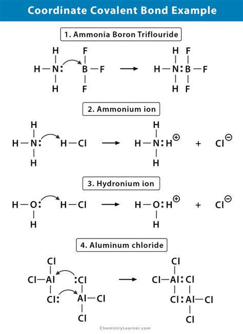 Coordinate Covalent Bond: Definition and Examples