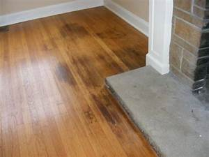 How to clean pet urine from wood floors puppy corner for Stains on hardwood floors from pets