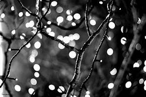tumblr images black and white - Google Search | art ...