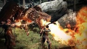 Surprise 201339s Dragon39s Dogma Dark Arisen Hits PC In