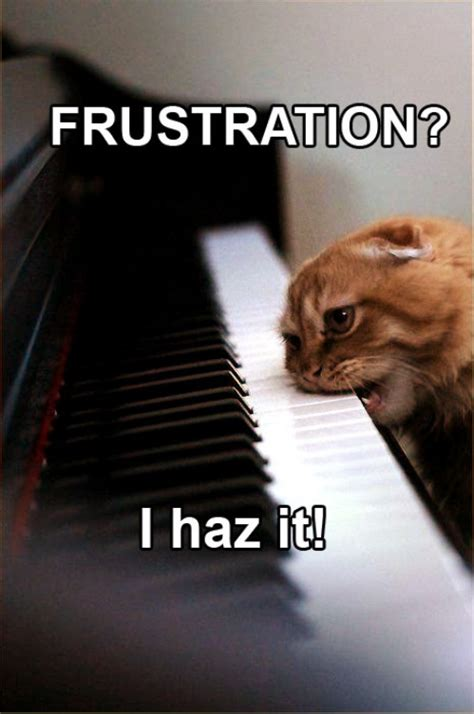 Frustrated Meme - funny frustration quotes quotesgram