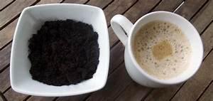 Kaffeesatz Als Dünger : kaffeesatz als d nger verwenden gr neliebe ~ Watch28wear.com Haus und Dekorationen