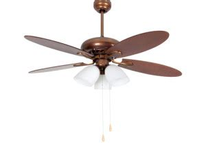 ceiling fans spinning    direction