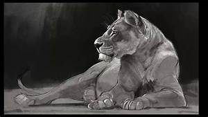 Speed Paint - Lioness Drawing