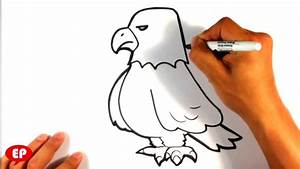 How to Draw an Eagle - Cute - Easy Pictures to Draw - YouTube