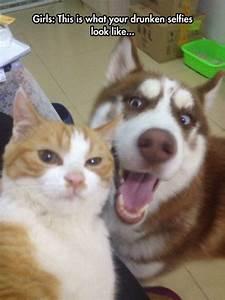 Drunken Selfies Illustrated