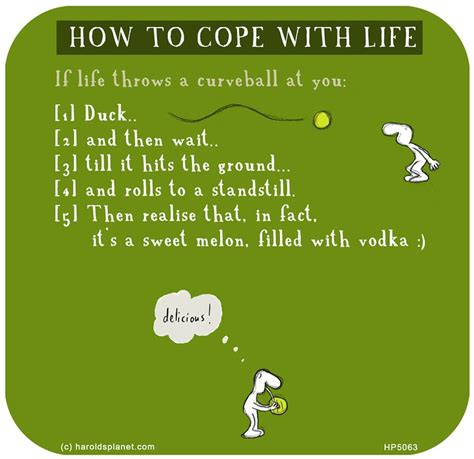 How To Cope With Life  My Favourites From Harold & Vimrod