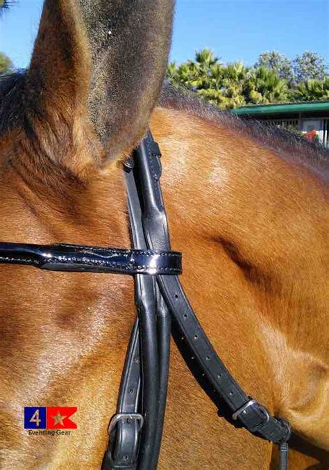 bridle rolled double leather vespucci dressage weymouth