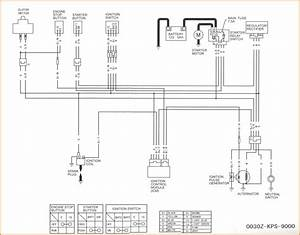 Pit Bike Wiring Diagram 125cc