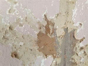 Alte Tapeten Ablösen : alte tapete von pressspanwand entfernen wand maler ~ Watch28wear.com Haus und Dekorationen
