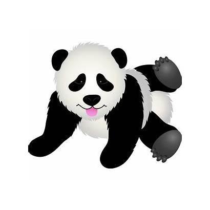 Panda Bear Clip Clipart Bears Animal Teddy