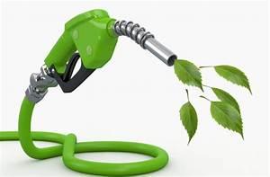 Biofuels Not Very Green   Financial Tribune