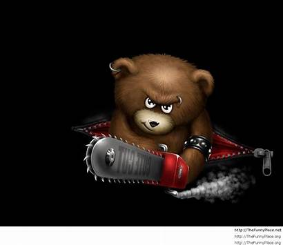 Funny Wallpapers Awesome Bear Cool Angry Phone