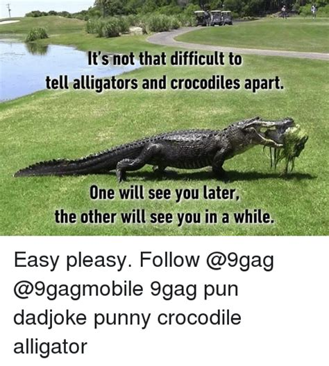Crocodile Meme - 25 best memes about see you later see you later memes